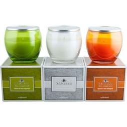 Essenza 3-pack Luxury Candle Set, Tangerine Zest & Mango, Dr