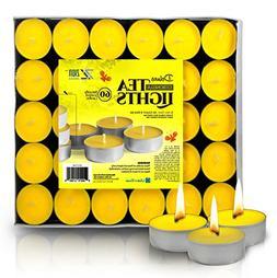 Zion Judaica Citronella Lemon Scented Quality Tealight Candl