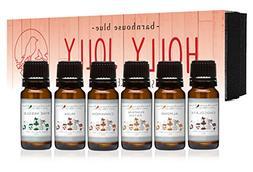 Premium Grade Fragrance Oil - Holly Jolly - Gift Set 6/10ML