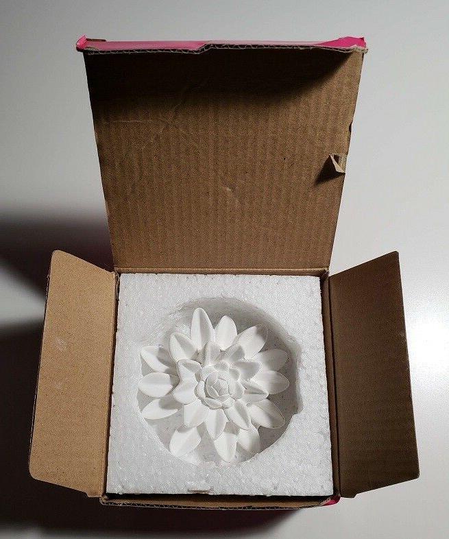 Perfume Diffuser New Box