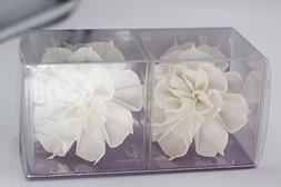 "Feel Fragrance Sola Wood Flower with Cotton Wire Wick 3.5"" D"