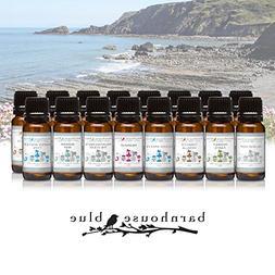 Under The Sea - Set of 16 Premium Fragrance Oils - Barnhouse